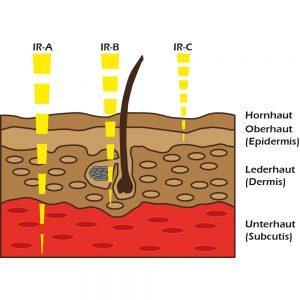 BTM Infrarotkabinen Haut